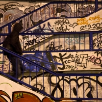 36-matteo-vegetti-balkan-graffiti-and-stairs