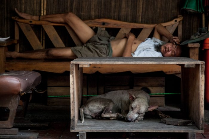 matteo-vegetti-thailand-bangkok-man-and-dog-sleeping