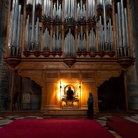 Organ player