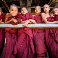 Group of young Buddhist monks