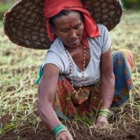 06-matteo-vegetti-nepal-for-mmm