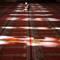 Man praying in Omayyades mosque, Damascus
