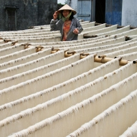 Vietnamese woman among drying noodles