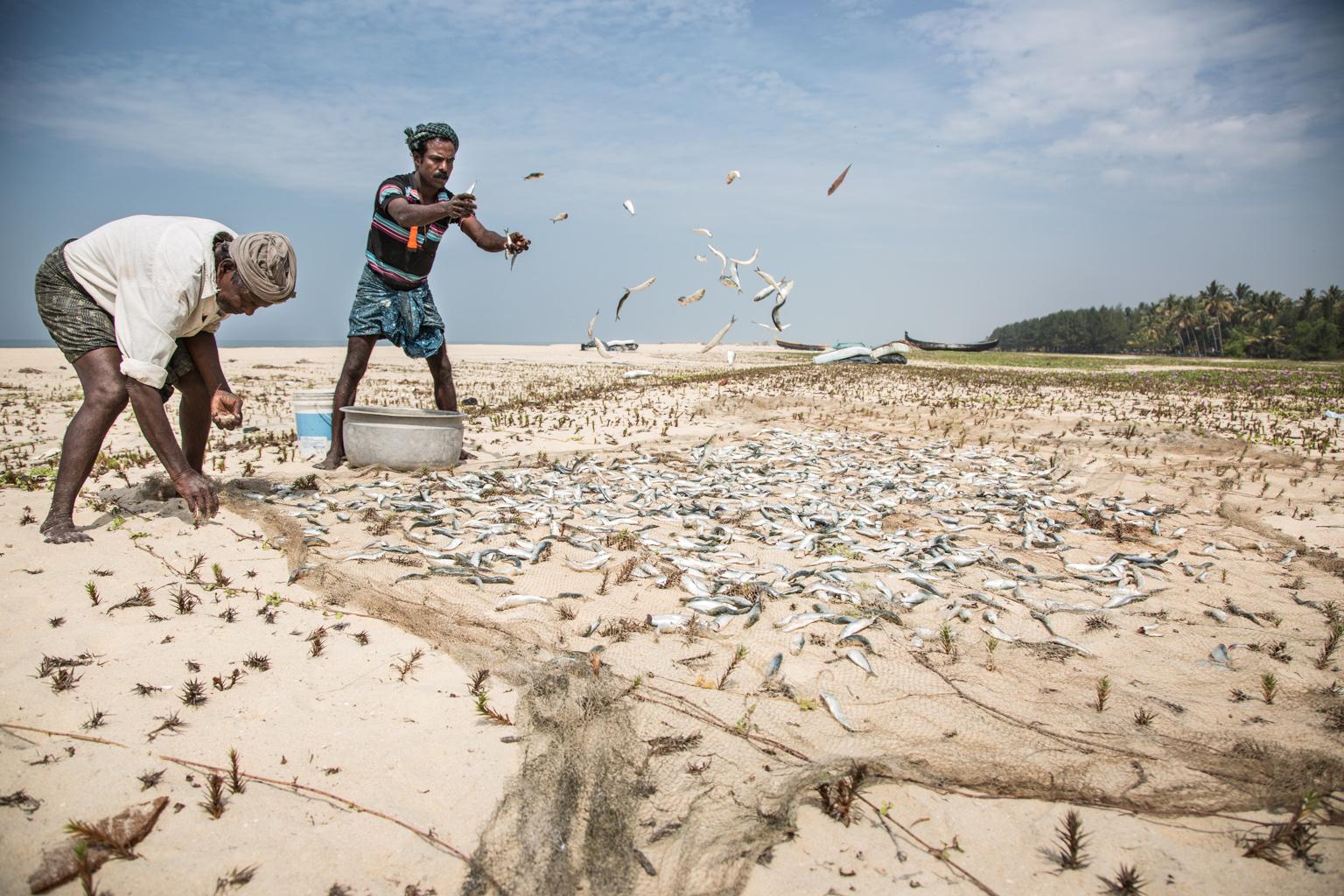 Matteo-Vegetti-blog-fishermen-of-Kerala-6959